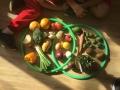 Harvest-Festival-5